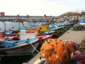 MarinaBoats